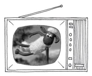 TVshaun2